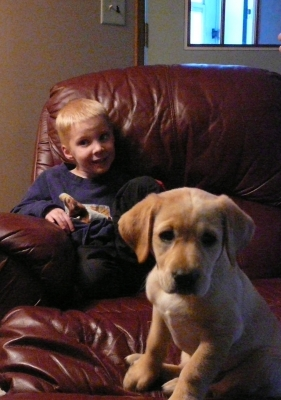 Every Puppy Needs A Little Boy