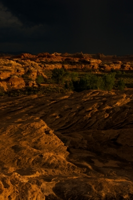 Stormlight In Canyonlands National Park