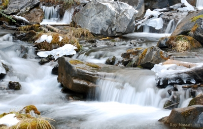 Canmore Creek
