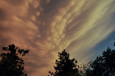 Mammatus Moving  Out