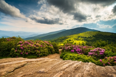 North Carolina Crown Jewels Appalachian Trail Roan Mountain