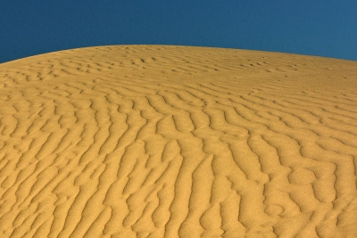 Looking Up The Sand Dune