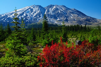 Autumn In The Mount St. Helen's Wilderness