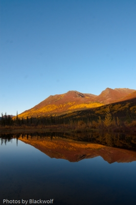 Fall, A Time To Reflect