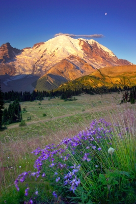 Sunrise Mt. Rainier, Washington