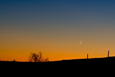 Crescent Moon After Sundown