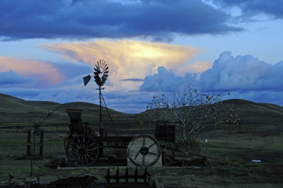 Rush Ranch After The Storm