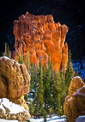 A Little Piece Of Bryce Canyon