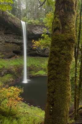 Front And Back, South Falls, Silver Falls St. Park, Oregon