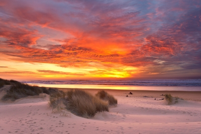 Sand Dunes And Oregon Coastal Sunset