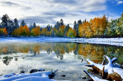Winter's First Reflection