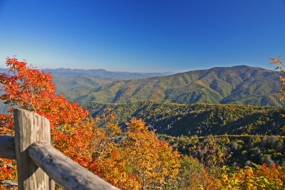 Mount Cammerer Lookout Tower In The Fall
