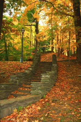 Stairway To Letchworth