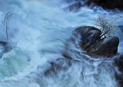 Tension And Chaos (cascade And Tamarack Confluence, Yosemite)