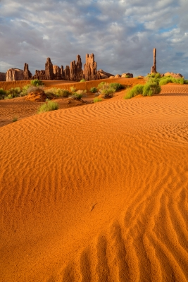 Monument Valley Dunes 1