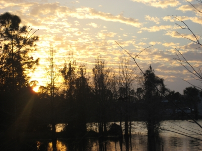 Sun Setting Over Trees And Water4