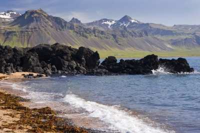 Rugged Iceland Beach