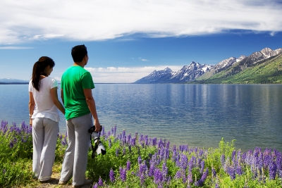 Tourists, Lupine, Grand Tetons