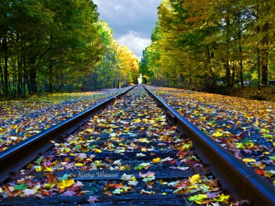 Fall On The Tracks