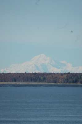 Denali From Anchorage