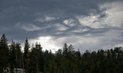 August Snowstorm Brewing