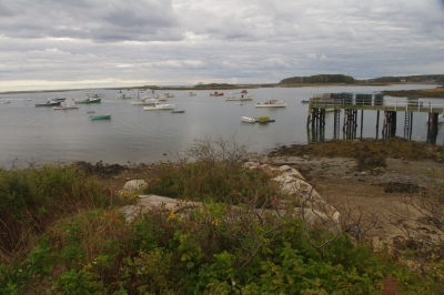 Cape Porpoise On A Cloudy Day