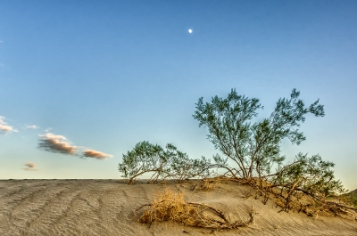 Moonrise On The Sand Dunes