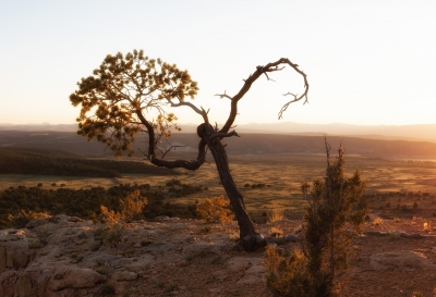 Sunset At Arch Trail