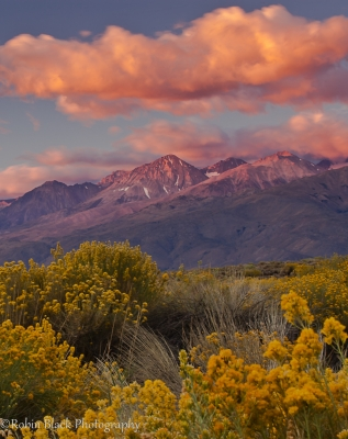 Autumn Sunrise, Owens Valley
