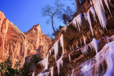 Icefalls In Zion