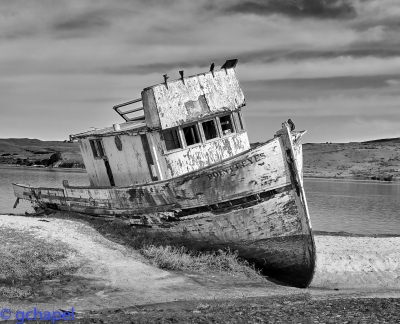 High Contrast Shipwrecked Boat In Inverness Ca. Near Point Reyes National Park.