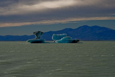 Glacierice Floating In Patagonian Lake