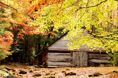Bud Ogle Place Barn In Fall