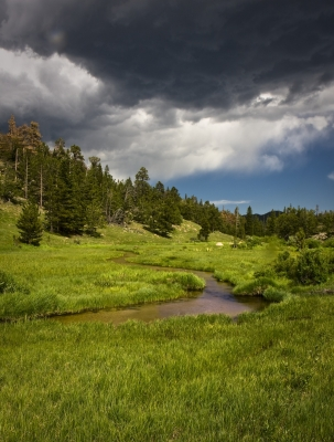 Looming Clouds Over Mountain Meadow