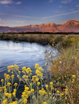 Owens River Fall