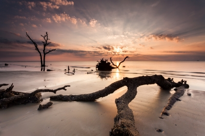 Sunrise Over The Hunting Island Boneyard