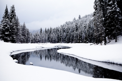 Truckee River In Winter