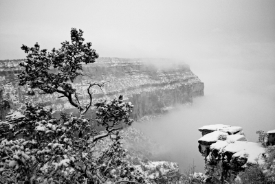 Emergence #5 – Icy Fog In The Grand Canyon