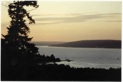 Puget Sound At Sunset