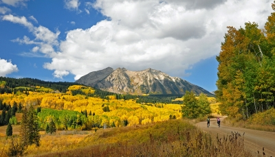 Aspens And Bicycles