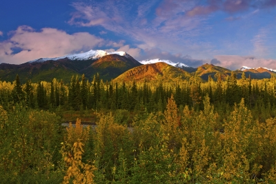 Alaska,park Highway Near Denali, Fall Colors, Sunset