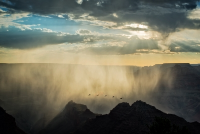 Grand Canyon Rain Curtain