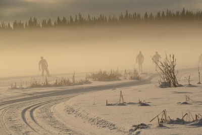 Skiers In The Fog