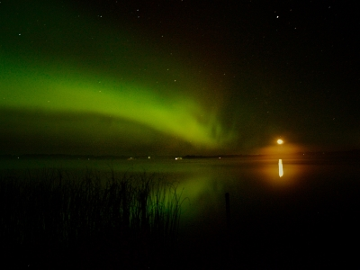 The Aurora Is Mooned