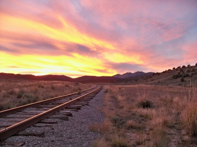 Tracks Lead To Gold