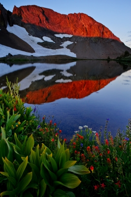 Wildflowers And Alpenglow At Sunrise Over Round Top Lake