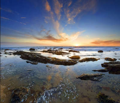 Crystal Cove Landscape