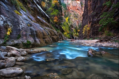 Zion Narrows Beauty