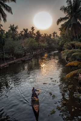 Evening In The Backwaters