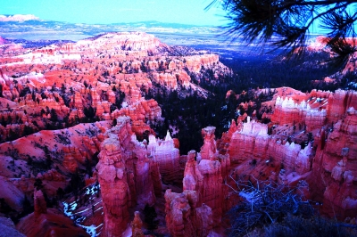 Evening At Bryce